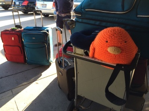 And so it begins! Bert is ready to head off on his adventure!