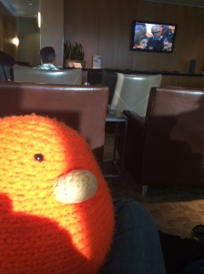 Bert catches up on the news while awaiting his flight