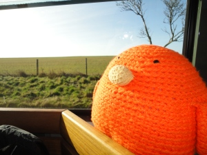 Bert in the shuttle to Stonehenge - it looks like he has antlers!