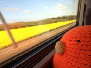 Bert loves traveling by train!