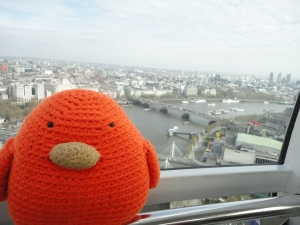 Bert's got a great view!