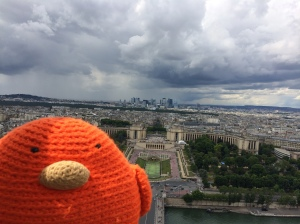 Bert looking over Paris