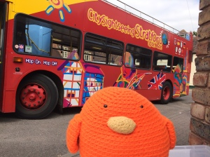 Bert loves the Hop-On/Hop-Off open air bus!